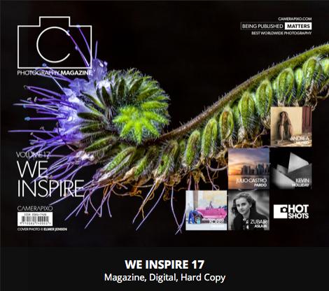 WE INSPIRE 17